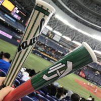 野球観戦 ☆☆☆☆☆_20170430_3